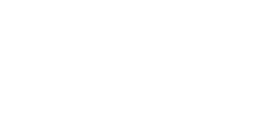 Center for Applied Research and Educational Improvement Logo